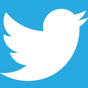 Paquete 10000 seguidores Twitter